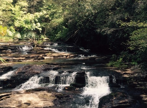 Small rapids on the Panther Creek hiking trail