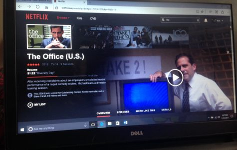 The most overrated series on Netflix