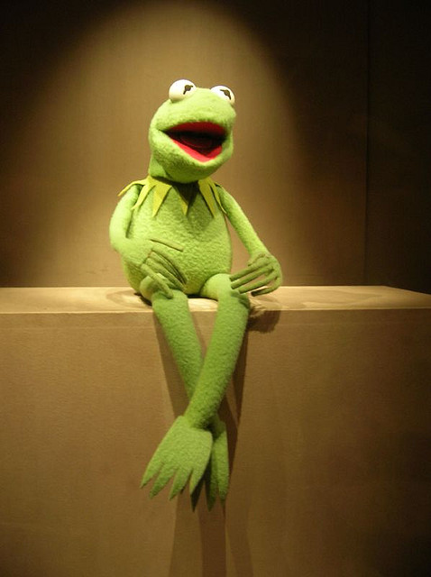 Kermit+the+Frog+continues+his+career+as+television+icon.