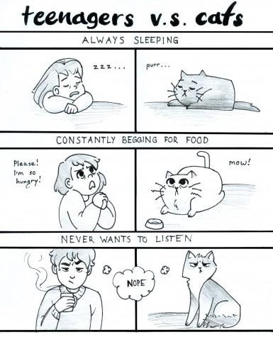 Teenagers vs cats