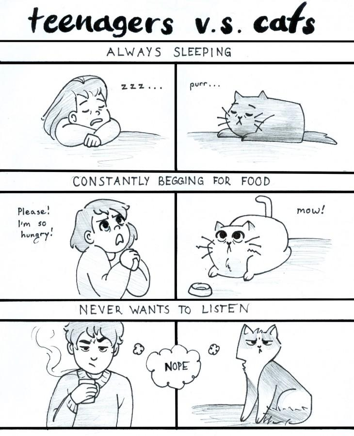 The correlation between teens and cats are depicted through Kathryn Raynor's comic. Maybe humans and felines aren't so different after all.