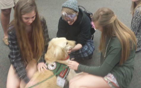Student's gather around the pooch for a stress-free visit