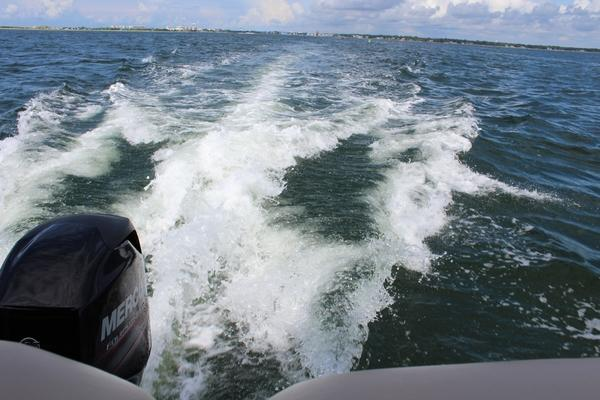 One of the reasons why we rented a boat was because of me. I had always wanted to swim with dolphins and on the boat rental website, it said that there were many dolphins in the ocean we were going to. Without hesitation, I told my dad and we made reservations. Before getting on the boat, I had all these thoughts and I told myself that if I saw one, I would jump into the ocean no matter what. However, I didn't see a single dolphin through the 4 hour ride; I didn't even see any other living creature, except for a dead fish that someone threw out.