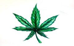 Atlanta decriminalizes marijuana