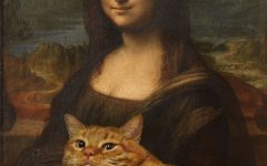 Zarathustra: the story behind the viral cat pictures