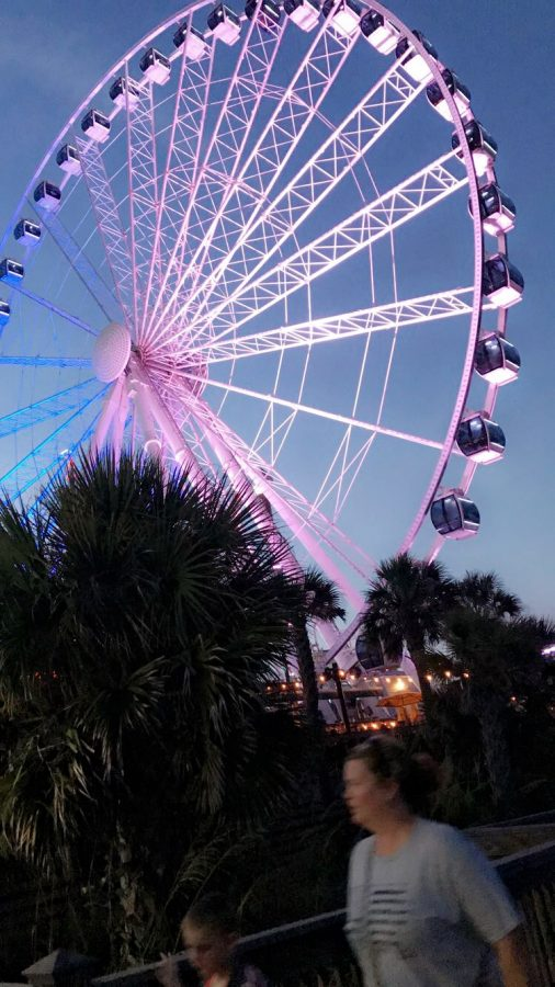 Traveling is an important and revolutionary experience that many high schoolers don't get time to do due to their busy schedules. This is a picture of the Ferris Wheel on the docks of Myrtle Beach in South Carolina, another location I recently visited.