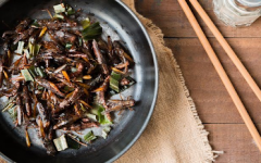 Entomophagy: The Future Of Food?