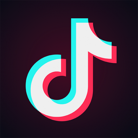 Tik Tok App Source: https://play.google.com/store/apps/details?id=com.zhiliaoapp.musically&hl=en_US