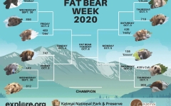 The original bracket for the competition this year, Bracket From NPS on September 25, 2020, some rights reserved nps.gov/fat-bear-week