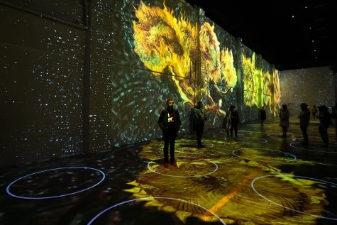 """Opening of Immersive Van Gogh Exhibit - 14"" by Roman Boldyrev is licensed under CC BY-NC-SA 2.0"